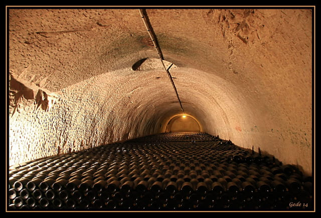 Visite de caves à champagne