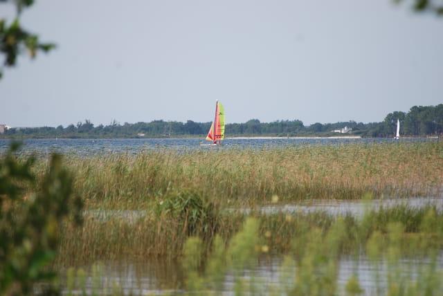 voiliers sur le lac