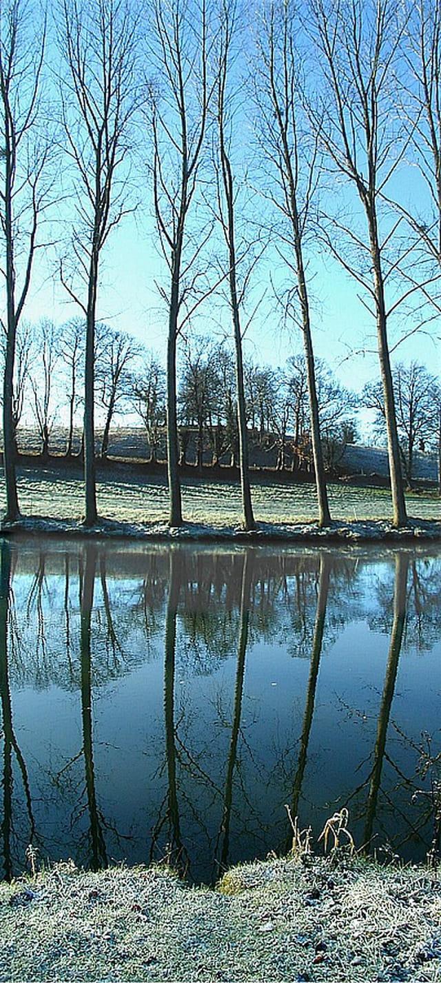 Vue de la Mayenne en hiver