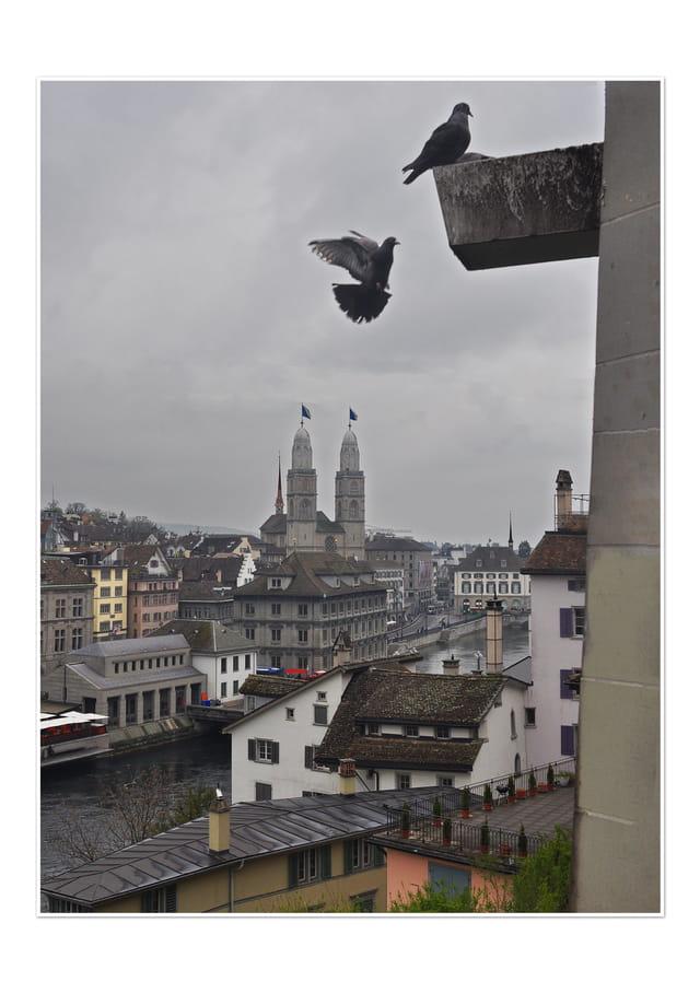 Vue de Zürich
