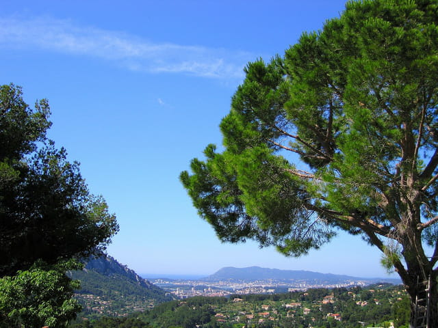 Vue depuis la Tour Sarrazine