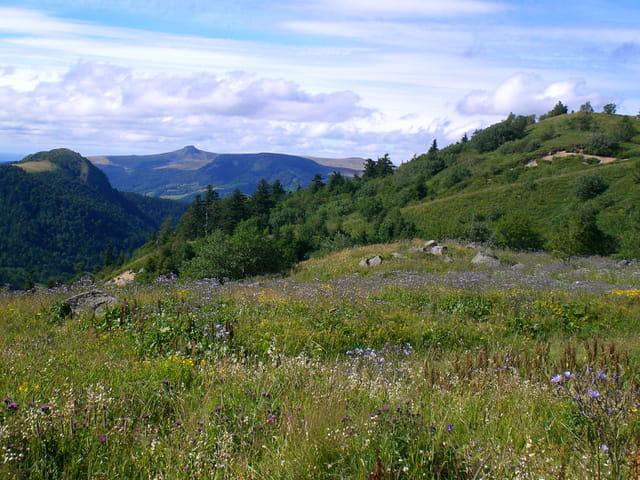 Vue depuis le Puy de Sancy
