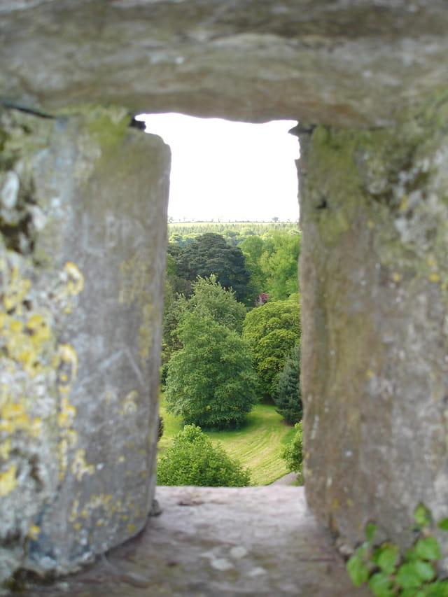 Vue du Blarney castle