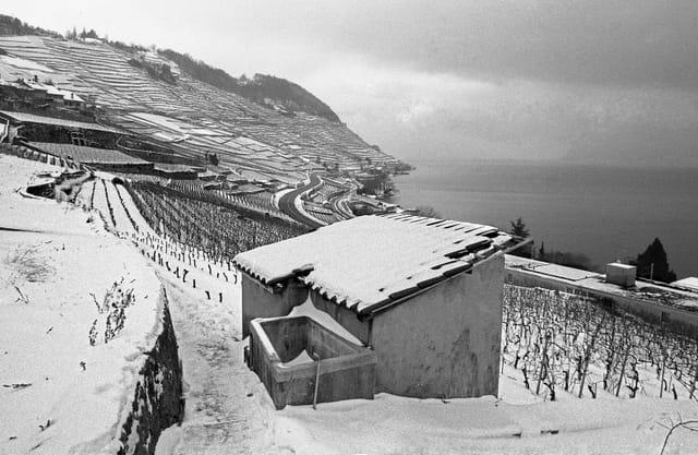 Vue du Lavaux sous la neige