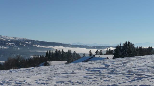 Vue du Mont Crosin en hiver
