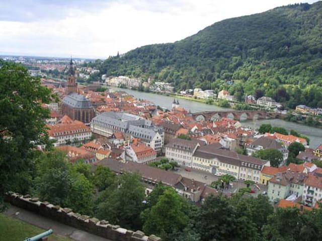 Vue sur la ville de heidelberg