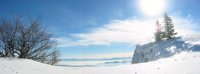 Vue sur les Alpes depuis le Jura