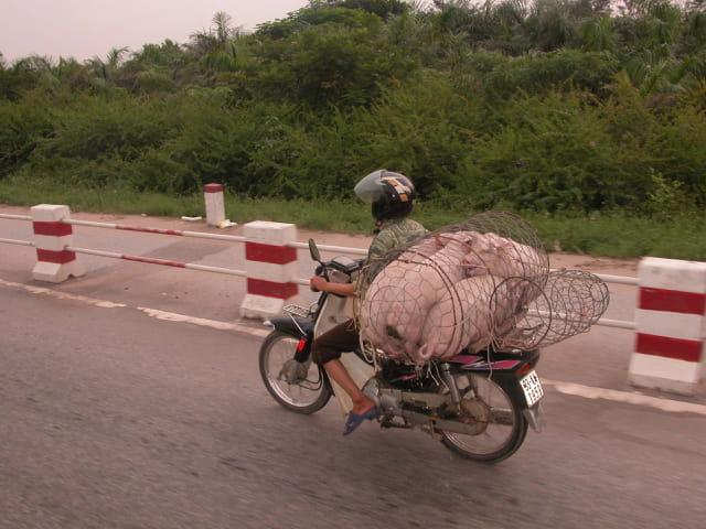 Zee transport en tout genre