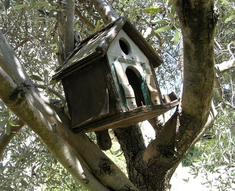 cabane dans l 39 olivier par huguette roman sur l 39 internaute. Black Bedroom Furniture Sets. Home Design Ideas
