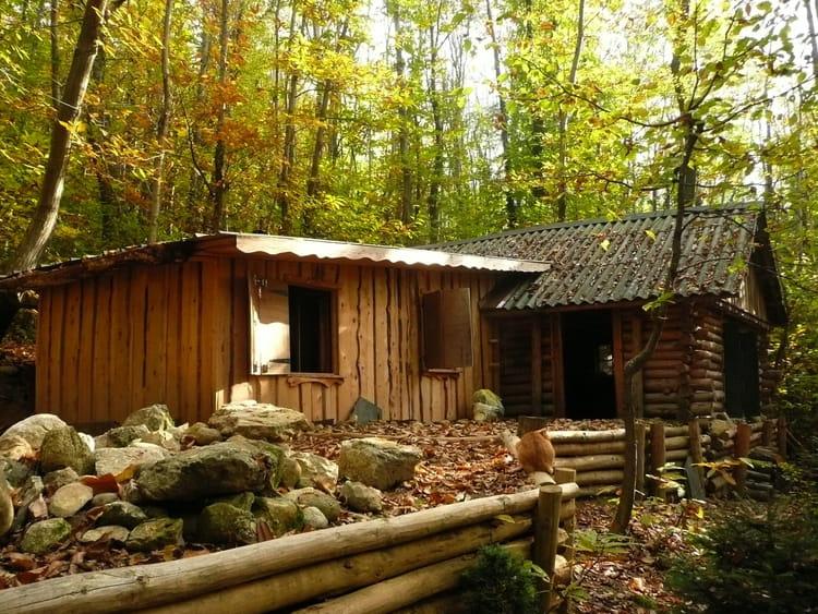 Ma cabane au fond des bois 2 par josiane ferret sur l for Ma cabane en bois