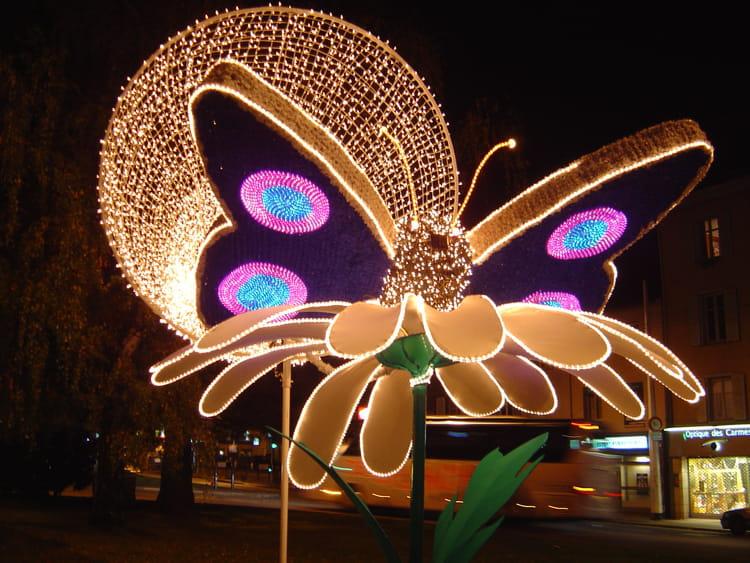 Papillon de nuit par paulette lavialle sur l 39 internaute - Gros papillon de nuit dangereux ...