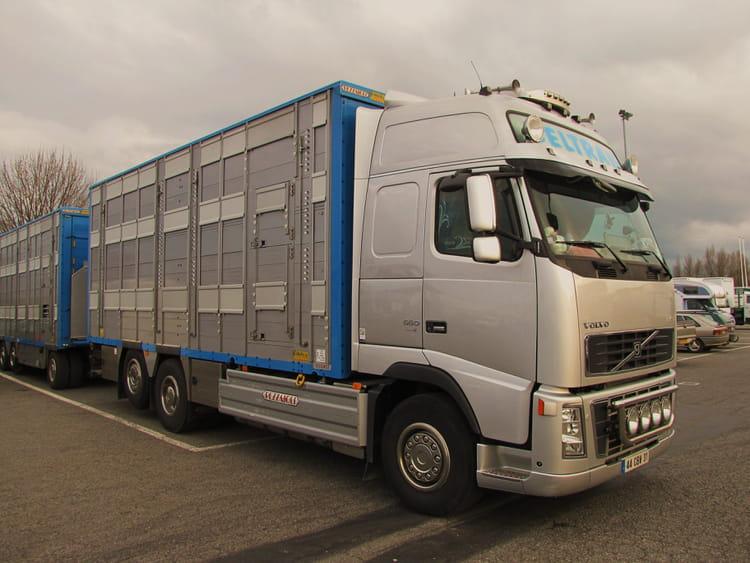 camion b taill re par jean marc puech sur l 39 internaute. Black Bedroom Furniture Sets. Home Design Ideas
