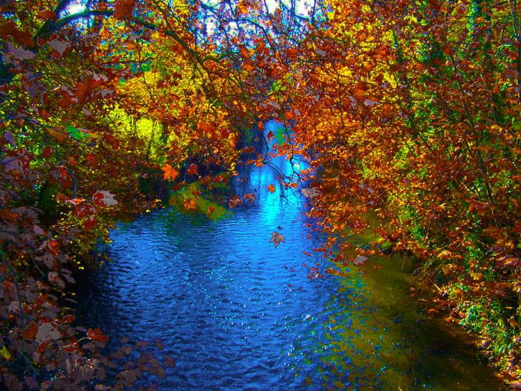 Rivi re d 39 automne par jean marc puech sur l 39 internaute for Photo nature hd gratuit