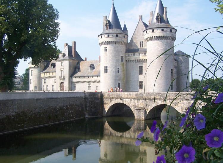 Chateau de sully sur loire par fabrice lorber sur l 39 internaute for Clair logis sully sur loire