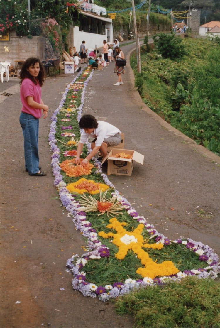 chemin de fleurs par alain van ruymbeke sur l'internaute