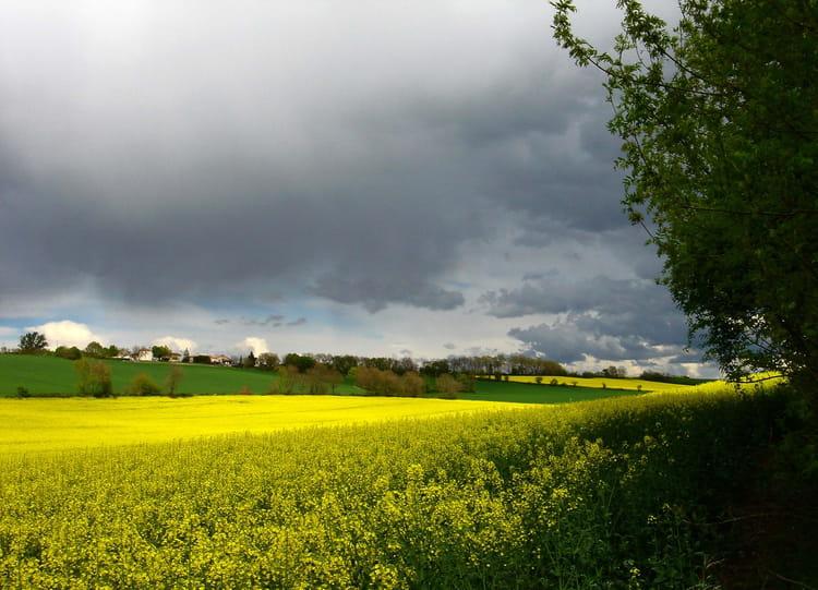 Bon Mardi Ciel-d-orage-1269728982-1305552