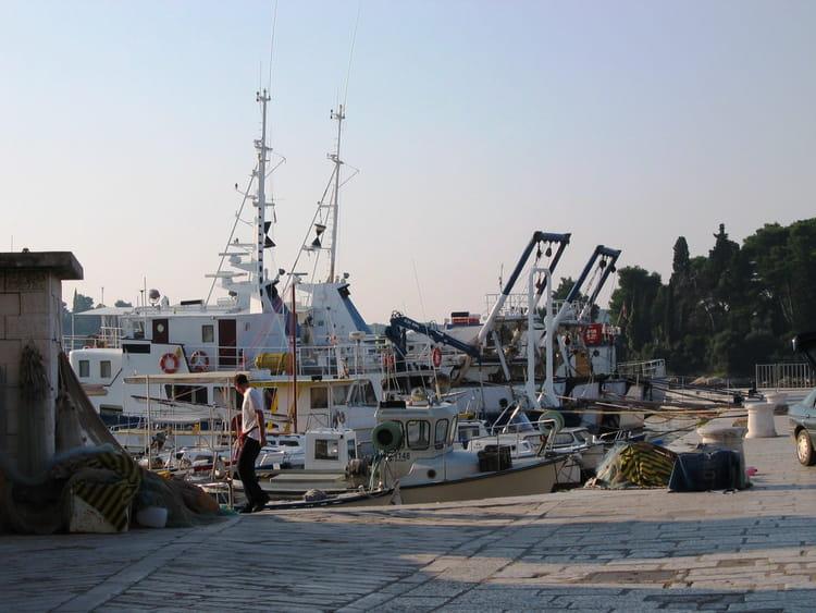 croatie port de rovigno par serge piguet sur l u0026 39 internaute