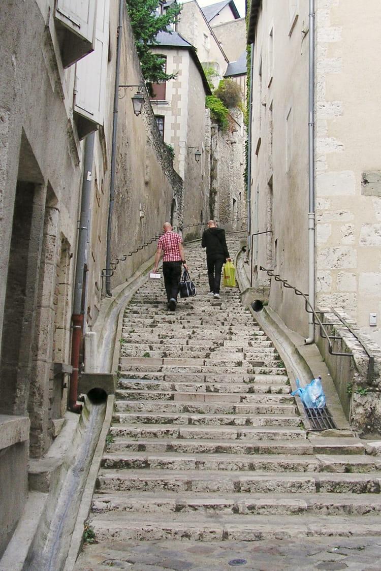 Escalier du vieux blois par sylvie fougeray sur l 39 internaute for Salon du chiot blois