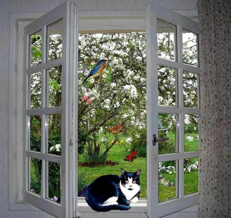Fen tre ouverte sur le printemps par jacqueline dubois sur for Une fenetre ouverte