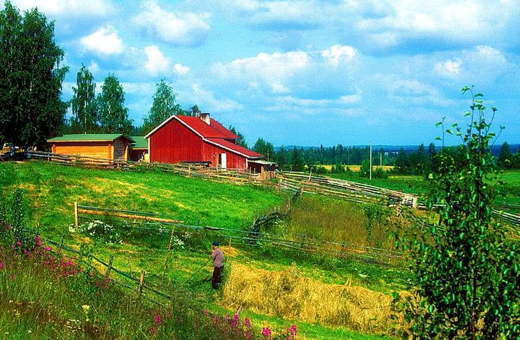 Finlande Paysage Rural Par Alice Aubert Sur L Internaute