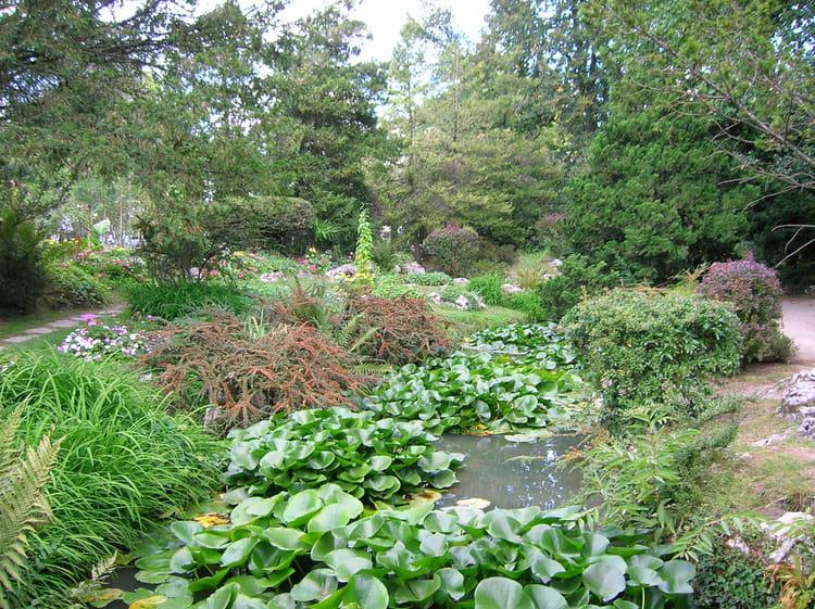 Jardin anglais par pierre ollivier sur l 39 internaute for Jardin anglais en france