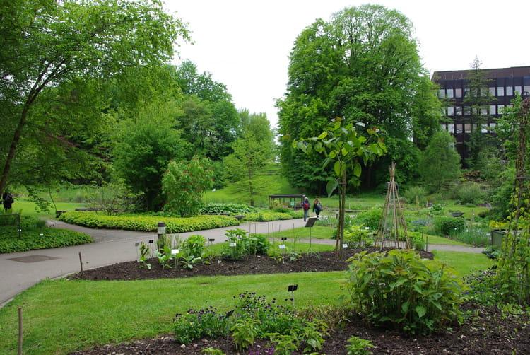 Jardin botanique par josiane castrec sur l 39 internaute for Bd du jardin botanique