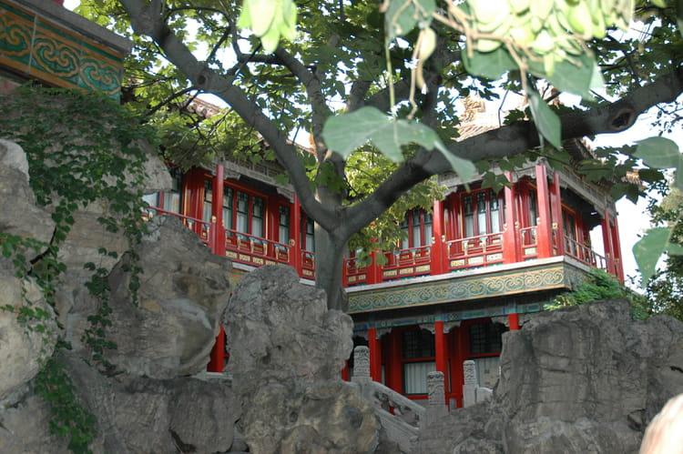 Jardin chinois par murielle mille sur l 39 internaute for Jardin chinois