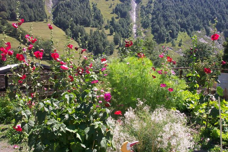 Jardin de montagne par marie ange chassat sur l 39 internaute - Jardin de montagne ...