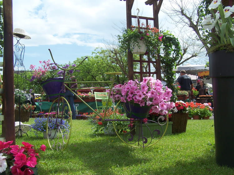 Jardin fleuri par jean marc puech sur l 39 internaute for Jardin fleuri maison