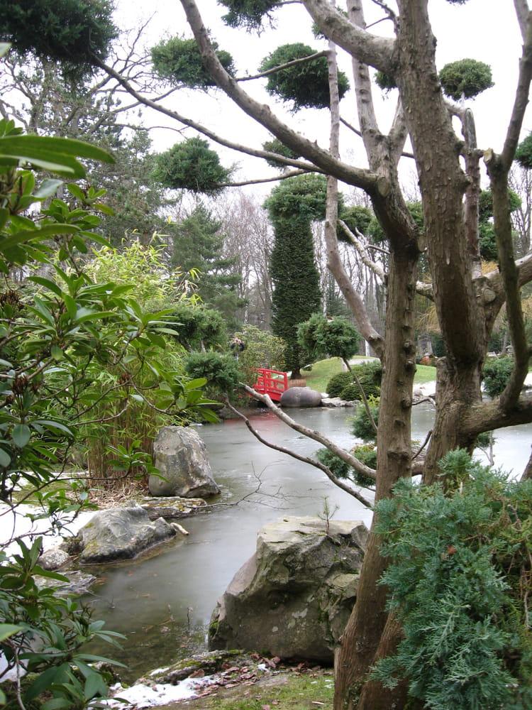 Jardin japonnais en hiver par annie labbe sur l 39 internaute for Jardin anglais en hiver