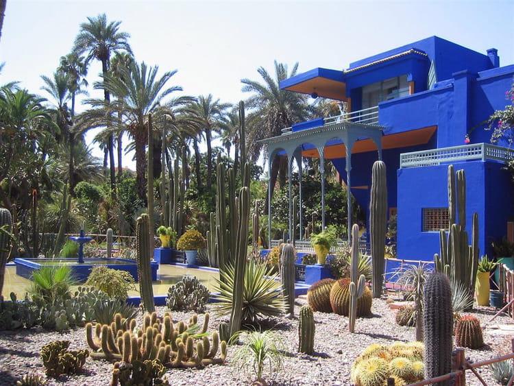 Jardin majorelle par philippe tenand sur l 39 internaute for Jardin majorelle