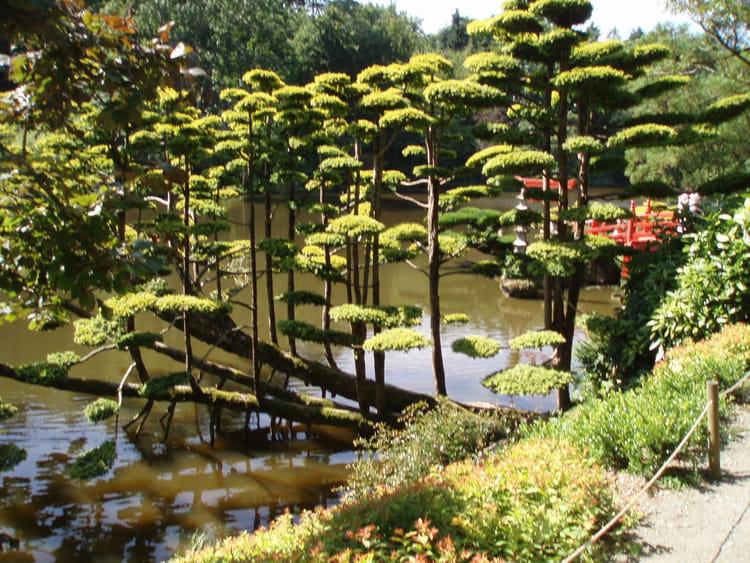jardin oriental par monique corre sur l 39 internaute