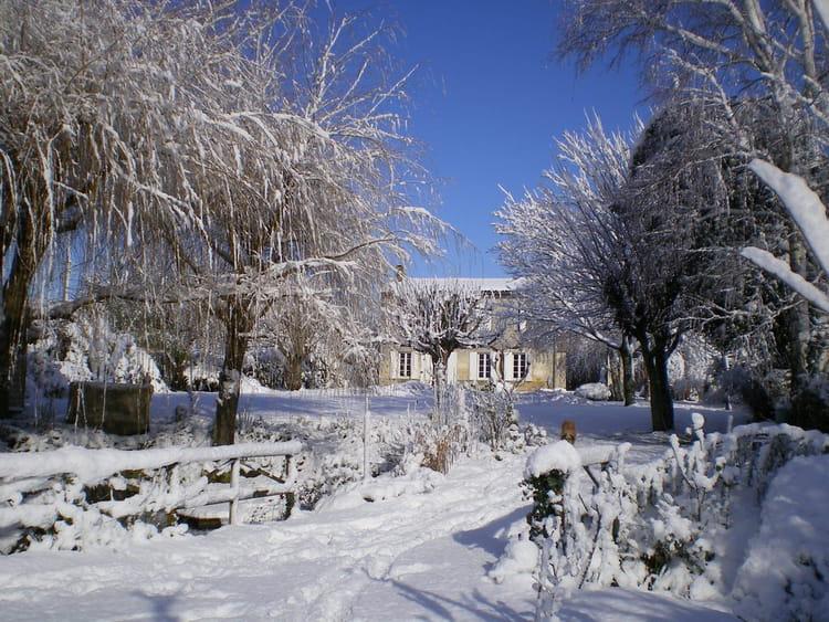 jardin sous la neige par jean claude eyma sur l 39 internaute. Black Bedroom Furniture Sets. Home Design Ideas