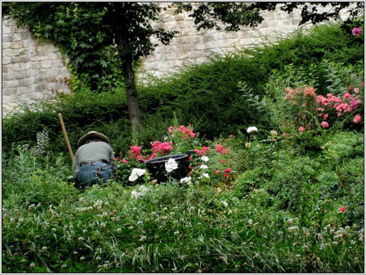 Jardinier au travail par jean pierre tolomio sur l 39 internaute for Recherche jardinier