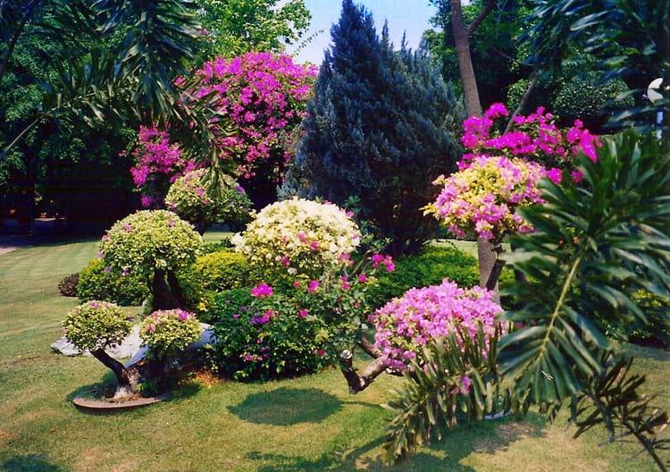 joli-jardin-1074966364-1295809