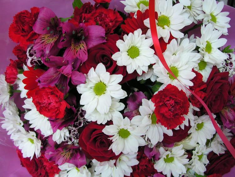Joyeux Anniversaire Par Patricia Burel Sur L Internaute