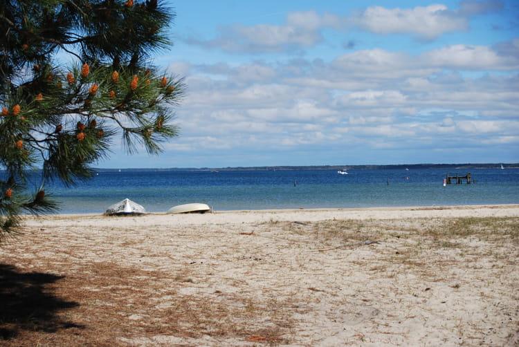 La plage au bord du lac de biscarrosse par genevieve lapoux sur l 39 internaute - La cabane au bord du lac biscarrosse ...