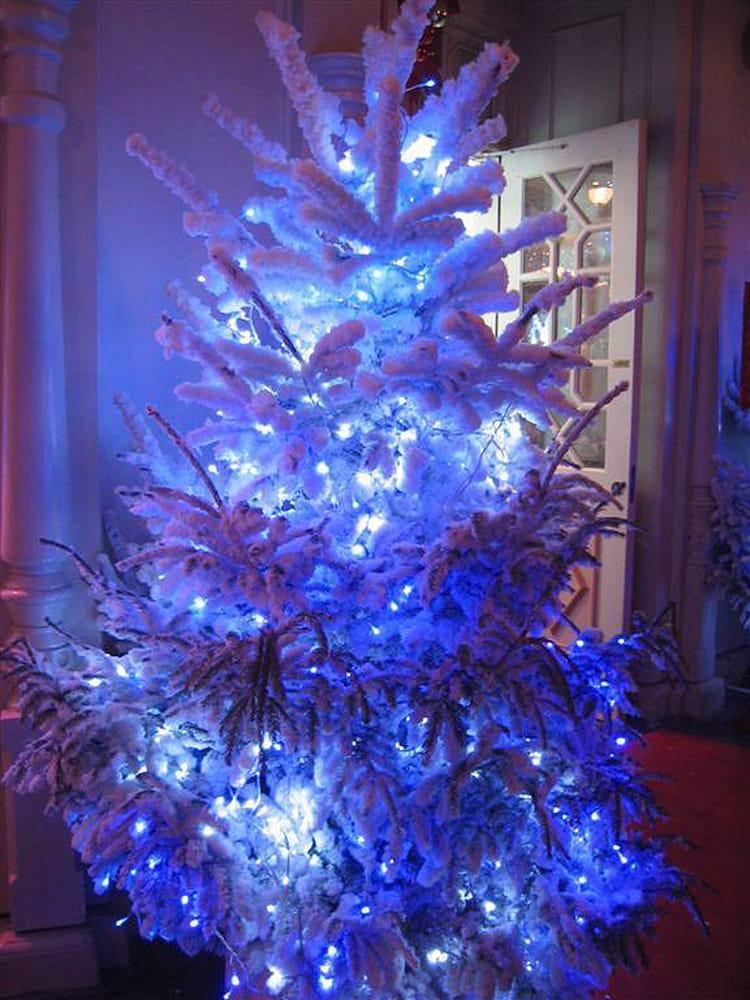 Le beau sapin bleu par philippe tenand sur l 39 internaute - Sapin deco blanc ...
