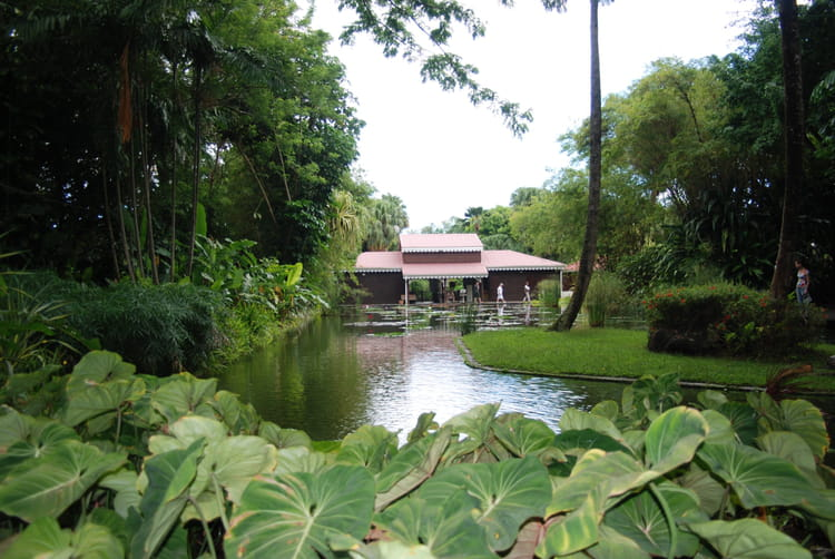 Le jardin botanique par genevieve lapoux sur l 39 internaute for Camping le jardin botanique limeray