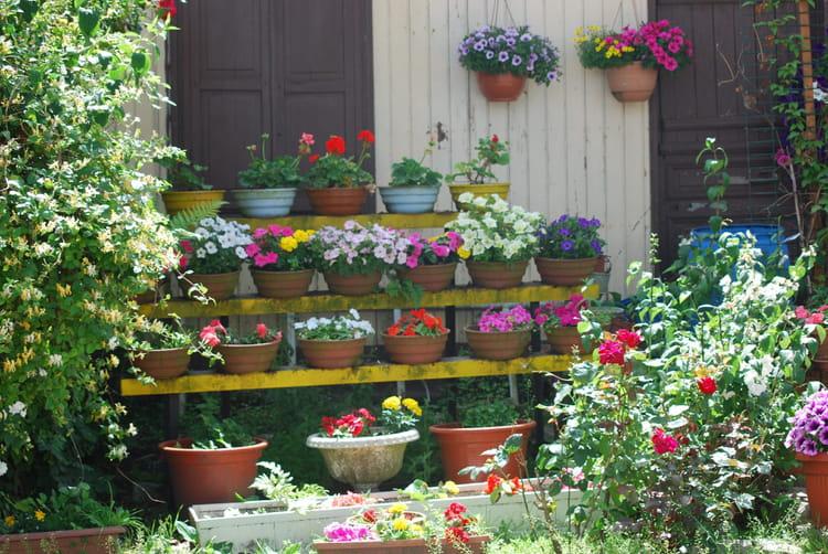 Le jardin en pots par genevieve lapoux sur l 39 internaute - Pot en fonte pour jardin ...