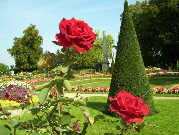 Le jardins de l 39 archevecher par annick martin sur l 39 internaute for Le jardin des fleurs bourges