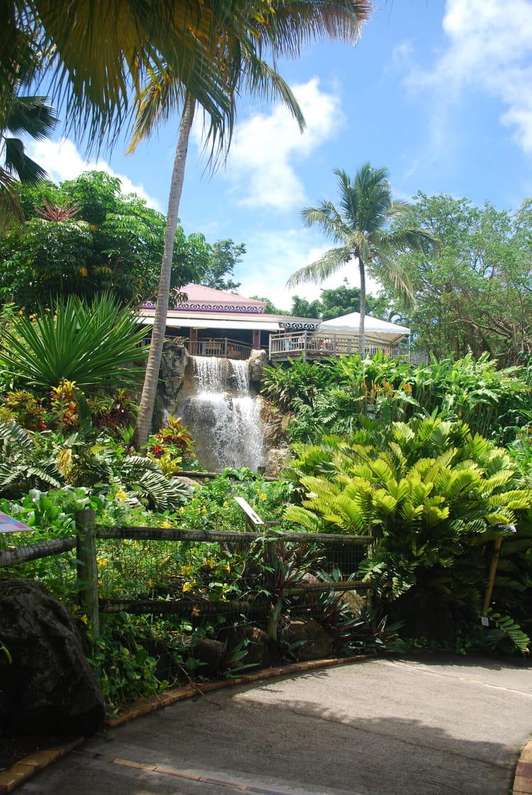 Le restaurant du jardin botanique par genevieve lapoux sur for Restaurant jardin