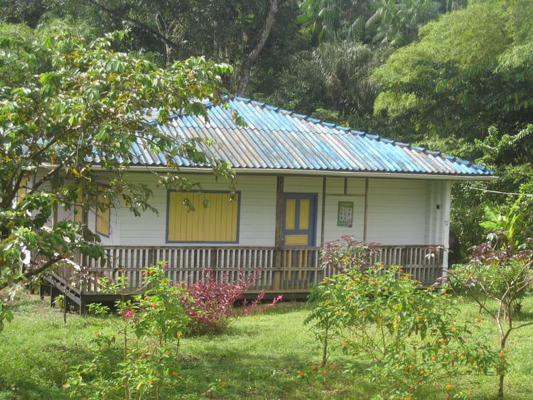 Ma petite maison dans amazone par elis regina braga - Ma petite maison com ...