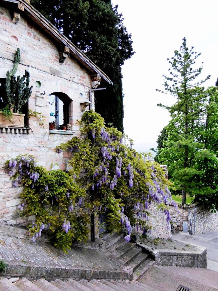 Maison en pierre rose et sa glycine par jacqueline dubois for Maison saint pierre rodez