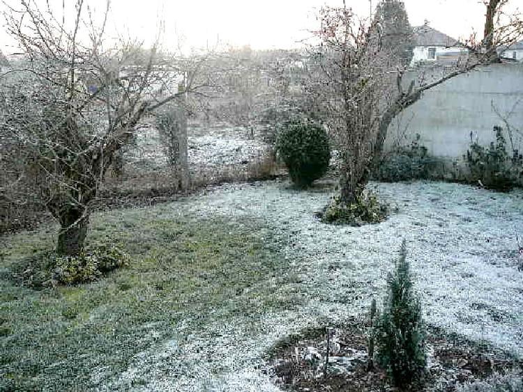Mon jardin en hiver par jacqueline dubois sur l 39 internaute for Jardin anglais en hiver