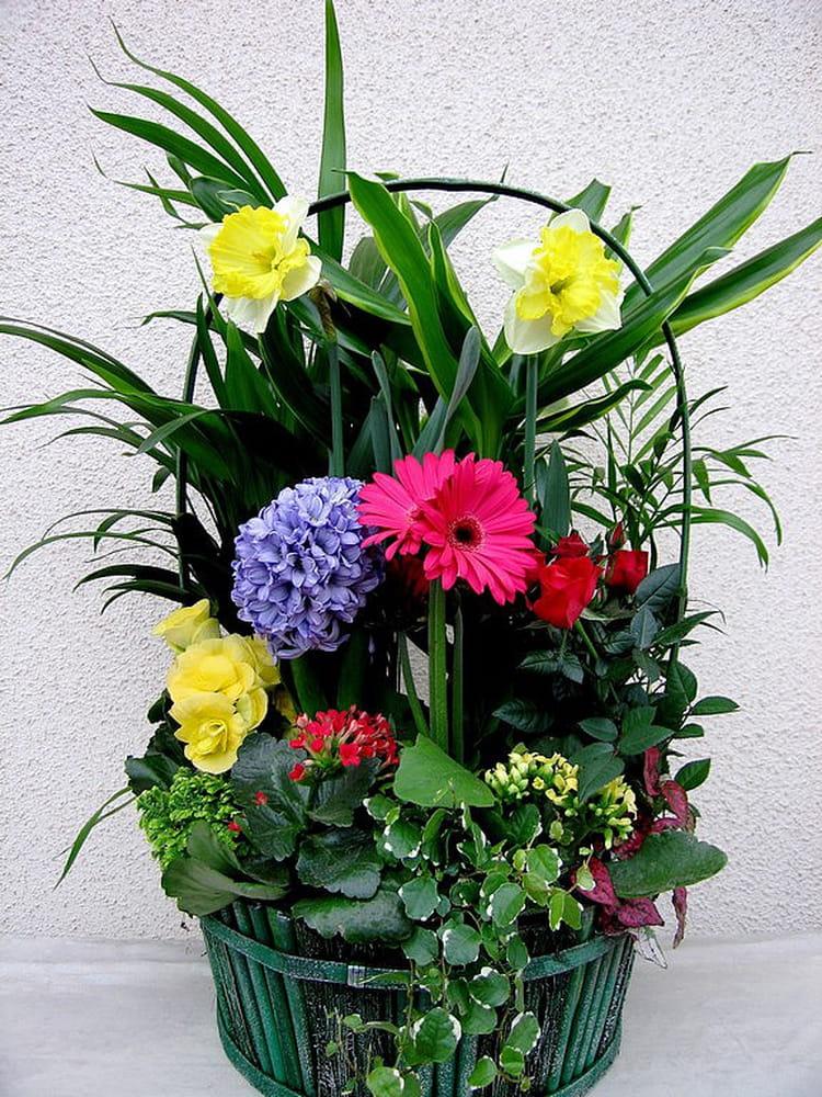 Panier De Fleurs Fraîches : Panier de fleurs par jean pierre marro sur l internaute