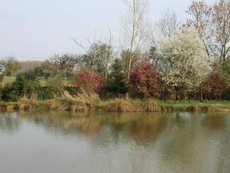 paysage de printemps par valerie foulon sur l u0026 39 internaute
