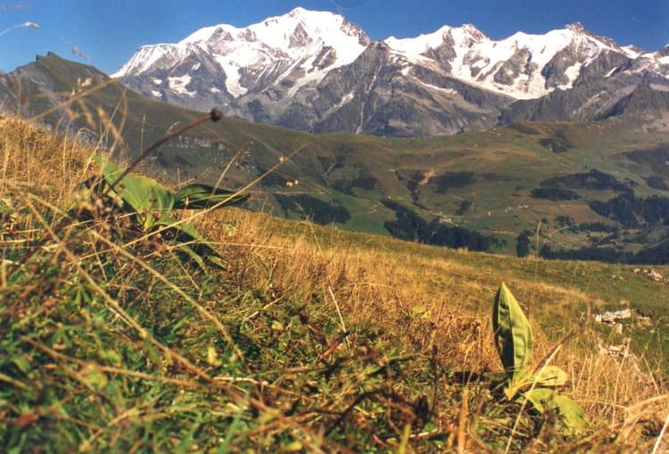 promenade autour du mont blanc 1 par alain barbet sur l internaute