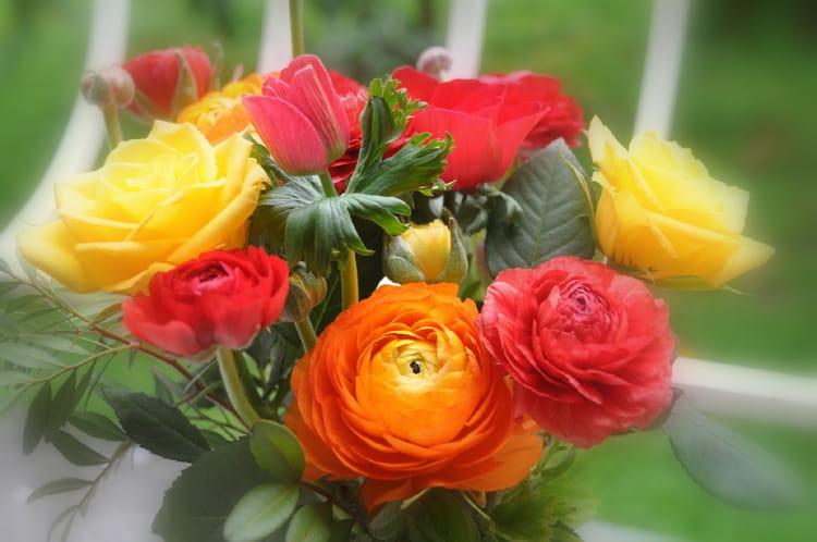 Bon Lundi Pluie-et-vent-dehors-printemps-dans-les-bouquets-de-la-maison-1364112338-1532511