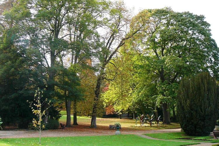 Promenade automnale au jardin botanique 1 par jacqueline for Bd du jardin botanique